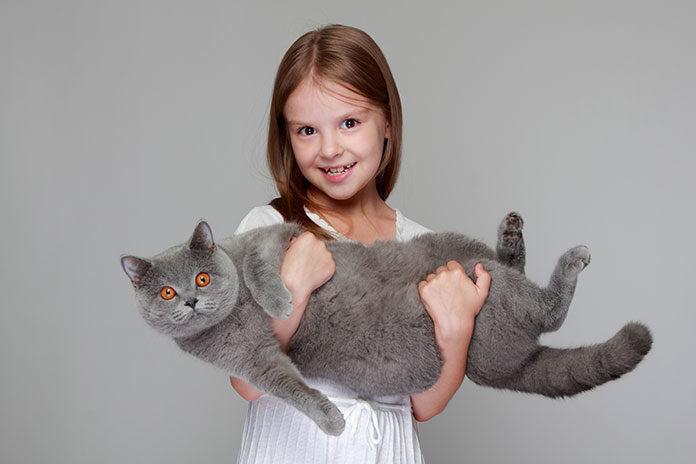 Jak wybrać kuwetę dla kota?